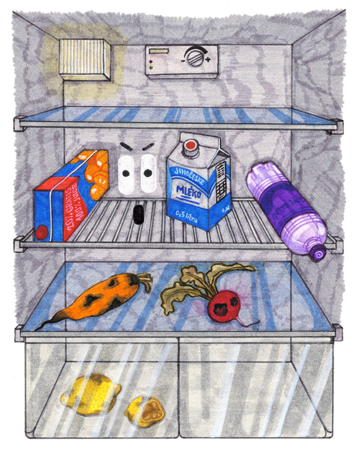 lednice_napojovy_karton_trideni_odpadu
