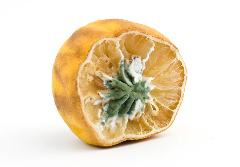 plesnivý citron
