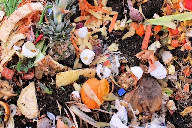 Bioodpad domácnost