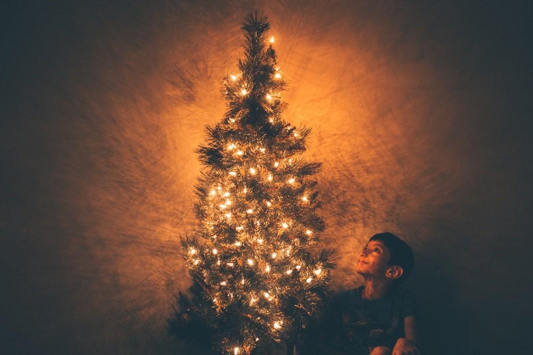 vanocni_stromek_rodina_trideni_svetla