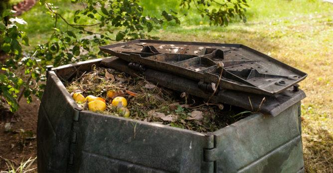 biodpad_kompost_rozklad